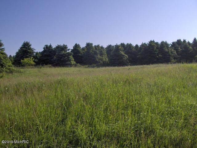 Olmstead Road, Lyons Twp, MI 48846 (#65019025320) :: Real Estate For A CAUSE