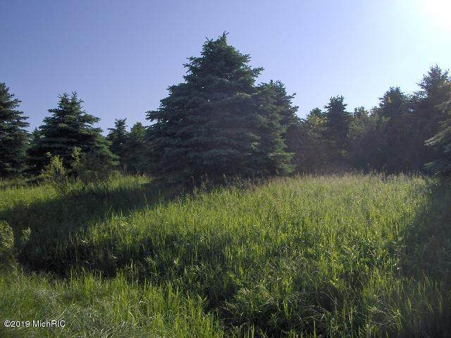 Lot 1 Olmstead Road, Lyons Twp, MI 48846 (#65019025300) :: The Alex Nugent Team | Real Estate One