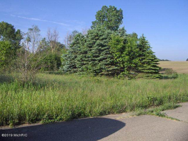 Olmstead Road, Lyons Twp, MI 48846 (#65019025317) :: Real Estate For A CAUSE