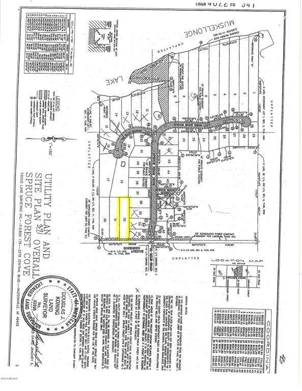 17195 Sorensen Avenue NE, Spencer Twp, MI 49326 (#65019007046) :: The BK Agency