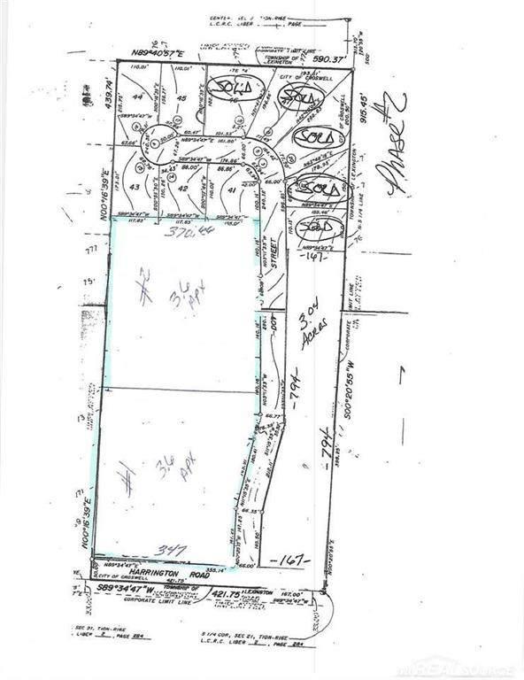Harrington/Dot Street Lot #1, Lexington Twp, MI 48422 (#58050032187) :: The Merrie Johnson Team