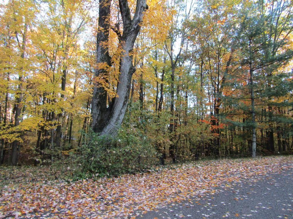 11180 Birwood Drive - Photo 1