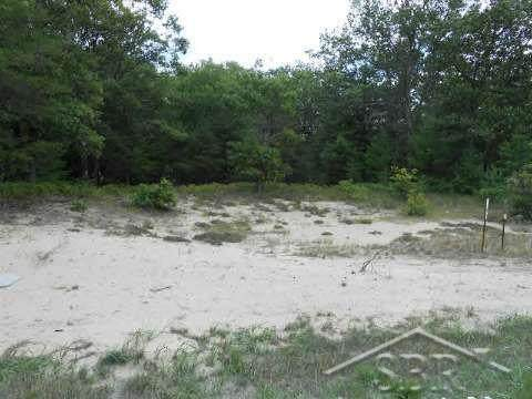 Lot 128 Crescent Beach N. Us 23, East Tawas, MI 48730 (#61050032917) :: The Alex Nugent Team | Real Estate One