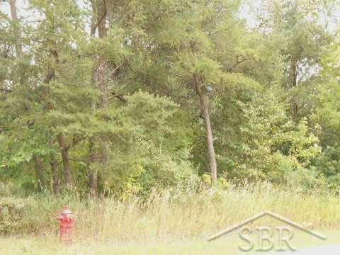 Cedar Lake Rd, Oscoda, MI 48750 (#61050033131) :: GK Real Estate Team