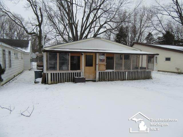 242 South St, Dundee, MI 48131 (MLS #57050033414) :: The John Wentworth Group