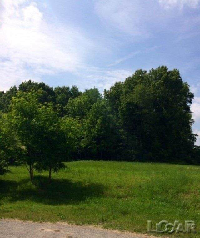 LOT 36 Pinehurst Ct, MADISON TWP, MI 49221 (#56050034052) :: Robert E Smith Realty