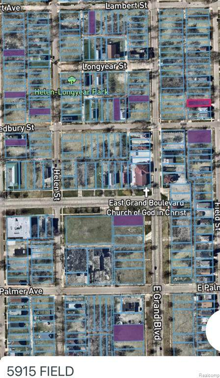 5915 Field, Detroit, MI 48213 (#2210012174) :: Novak & Associates