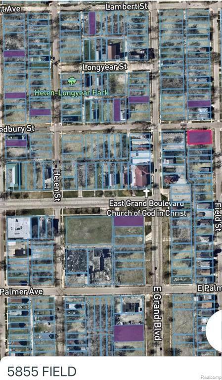 5855 Field, Detroit, MI 48213 (#2210012176) :: Novak & Associates