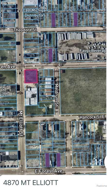 4870 Mt Elliott, Detroit, MI 48207 (#2210012204) :: The Alex Nugent Team | Real Estate One