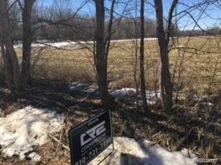 0 Cameron Rd, Berlin Twp, MI 48002 (#2210014932) :: Real Estate For A CAUSE