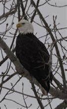 8655 Heron Court - Photo 20