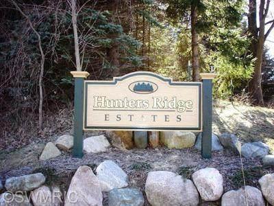 5805 Hunters Ridge, Manlius Twp, MI 49408 (#71021007419) :: The Merrie Johnson Team
