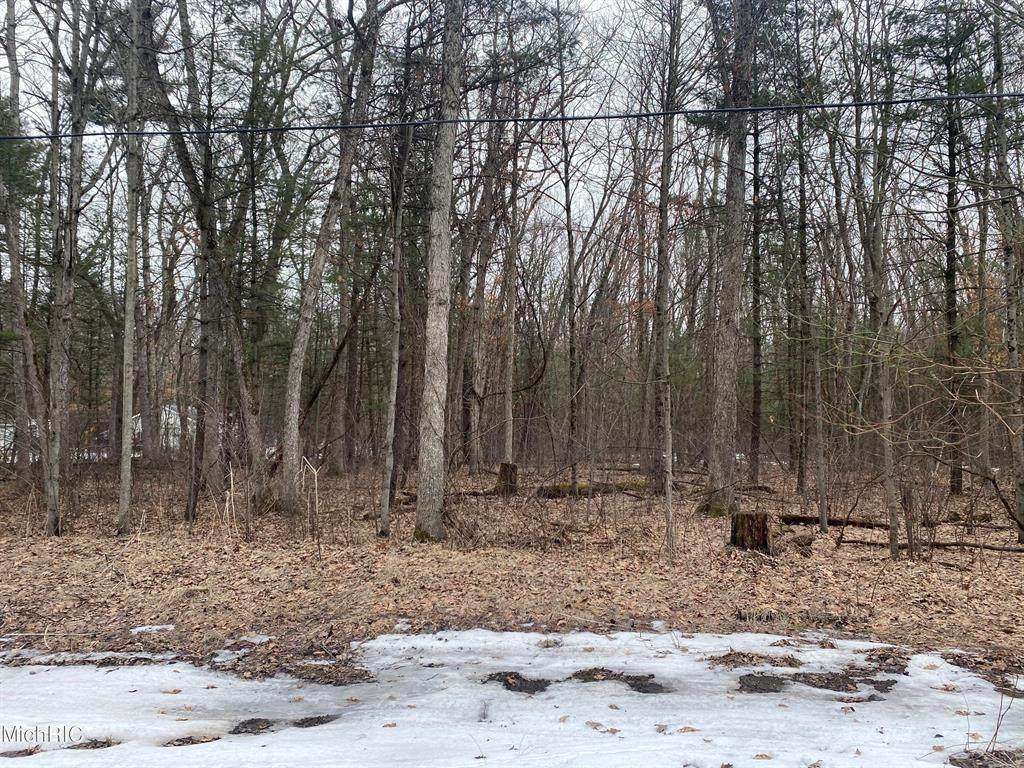 0 Dogwood Drive - Photo 1