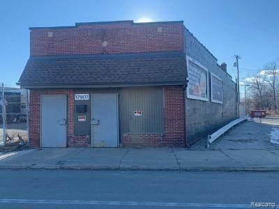 17907 Conant Street, Detroit, MI 48212 (#2210016097) :: RE/MAX Nexus