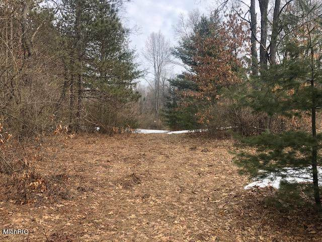 13612 90th Avenue, Martiny Twp, MI 49332 (#72021008202) :: RE/MAX Nexus