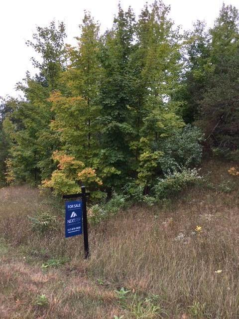 Lot 66 S Cherry Blossom Ln, Suttons Bay, MI 49682 (#55202100713) :: The Alex Nugent Team | Real Estate One