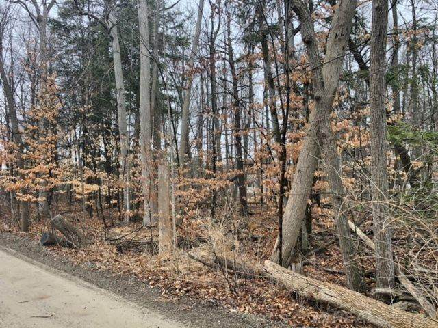 00 Hemlock (Lot's 36 & 37), Lexington Twp, MI 48450 (#58050037380) :: NextHome Showcase