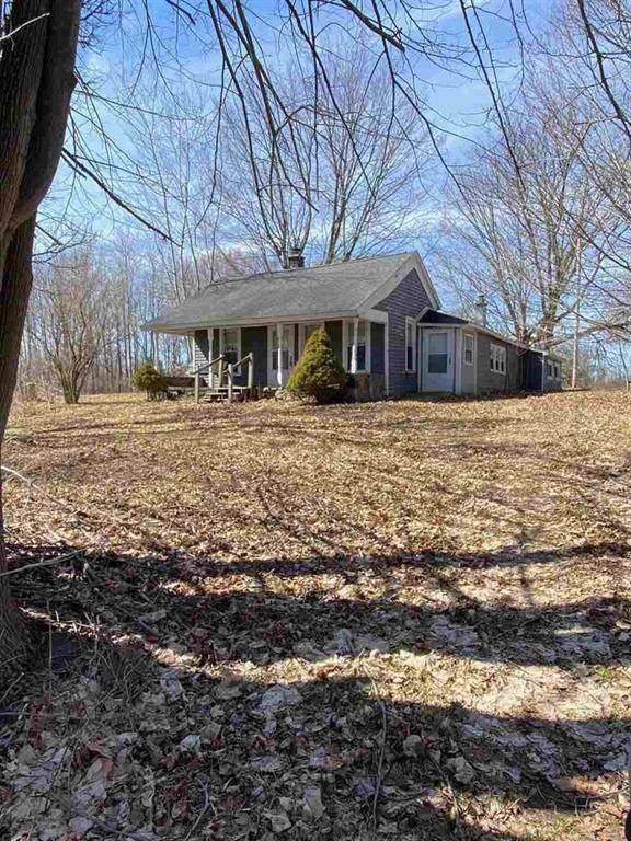 5733 50TH, Orient Twp, MI 49679 (#5050037975) :: Real Estate For A CAUSE