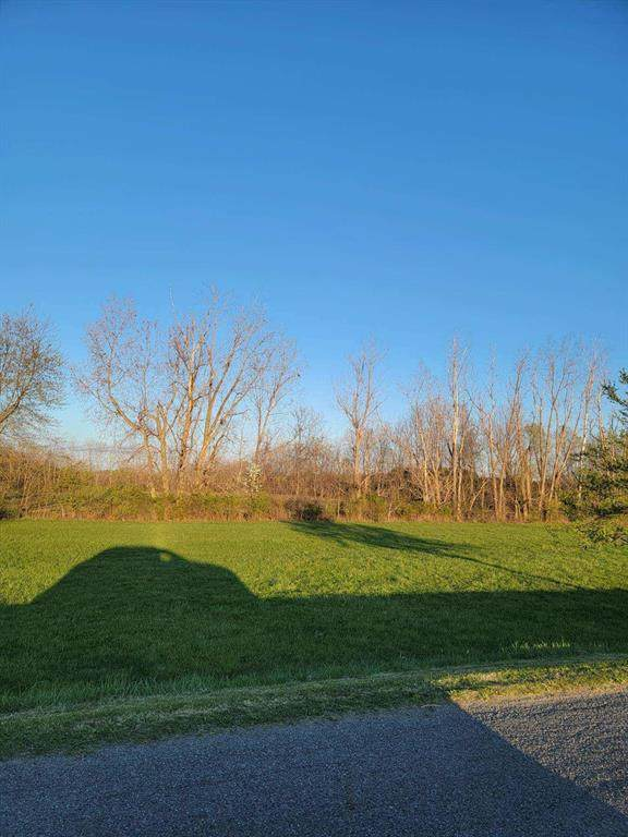 Holden Road, Baroda Twp, MI 49101 (#69021011389) :: RE/MAX Nexus
