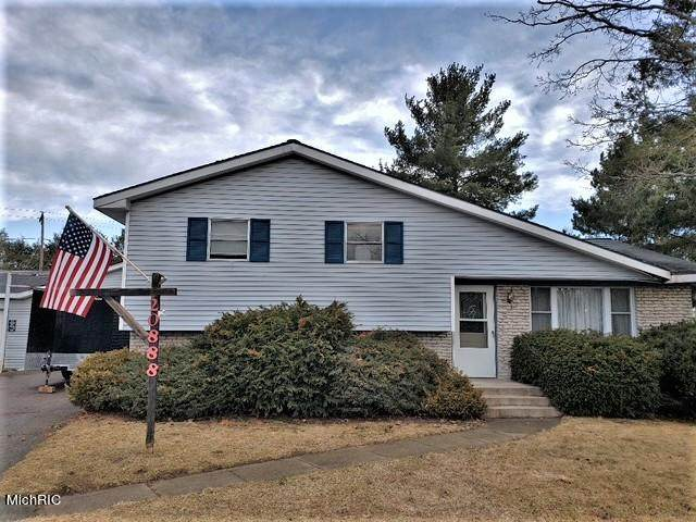20888 Emerald Lane, Green Twp, MI 49307 (#72021011608) :: Robert E Smith Realty