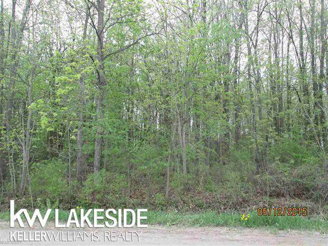 713 Miller, Berlin Twp, MI 48002 (#58050039024) :: Real Estate For A CAUSE