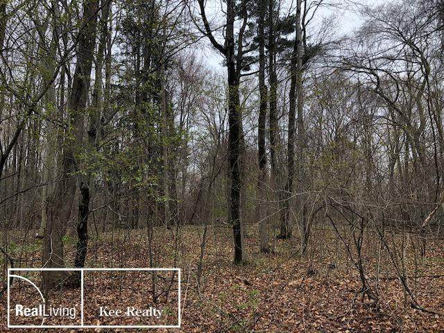 Sycamore Ln, Lot 3, Clyde Twp, MI 48049 (#58050039476) :: Real Estate For A CAUSE