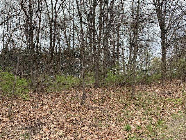 Parcel 1 Shoreline Drive, BARRY TWP, MI 49046 (#65021013298) :: Novak & Associates