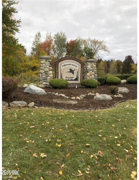 6402 Red Oak, Bruce Twp, MI 48065 (#58050040193) :: Novak & Associates