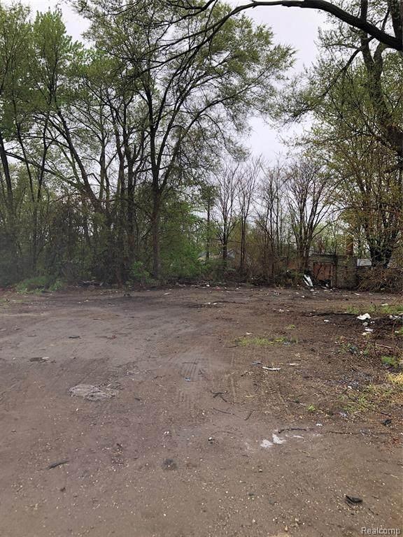 18049 Mound, Detroit, MI 48234 (#2210030735) :: RE/MAX Nexus