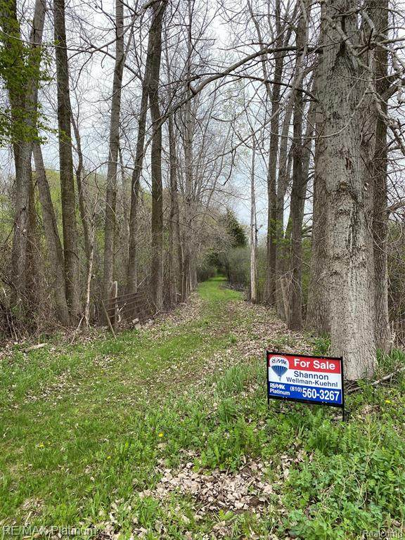 000 Joey Drive Vacant Land Parcel 022, Putnam Twp, MI 48169 (#2210031144) :: The Mulvihill Group