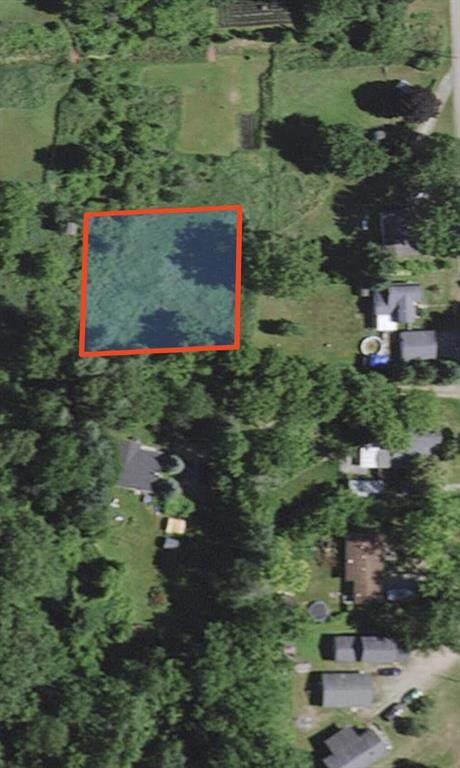 0 Henrietta Street, Henrietta Twp, MI 49259 (#72021016766) :: Real Estate For A CAUSE