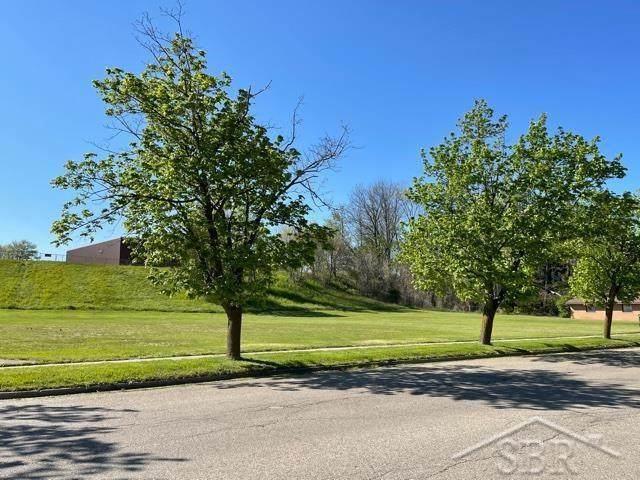 236 Division, Vassar, MI 48768 (#61050041759) :: Real Estate For A CAUSE