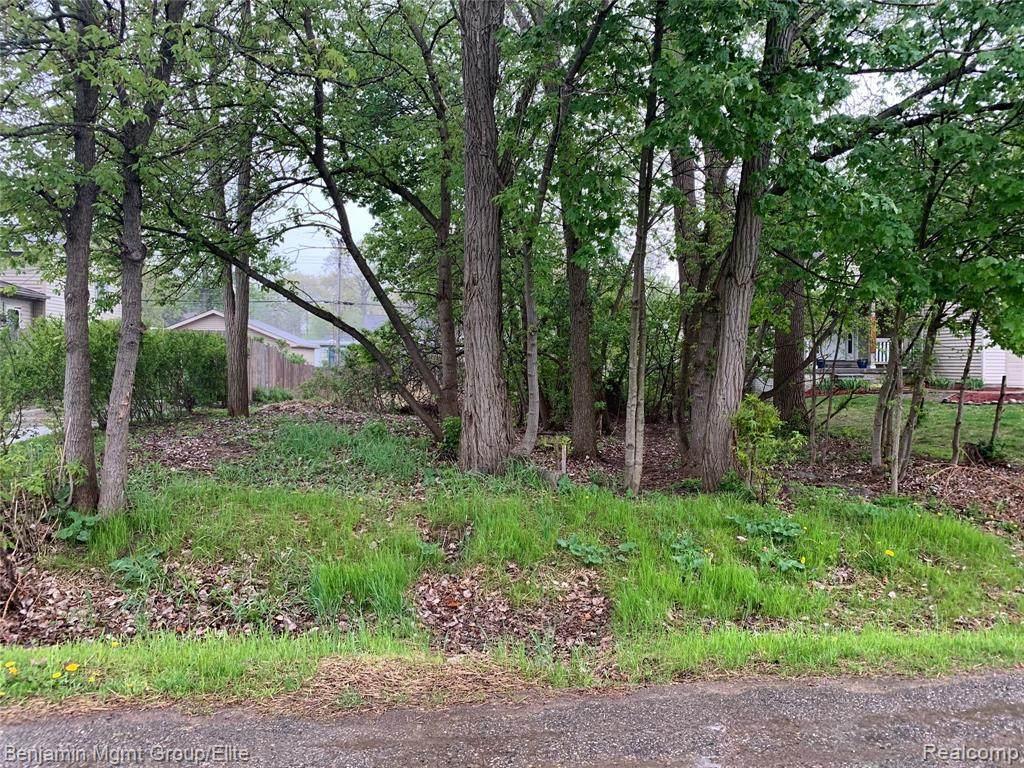 3965 Elmhurst Road - Photo 1