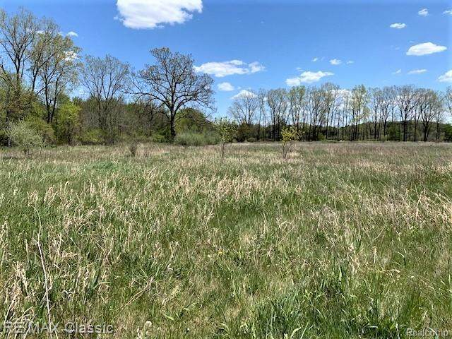 00 Stow Rd, Conway Twp, MI 48892 (#2210035454) :: The Mulvihill Group