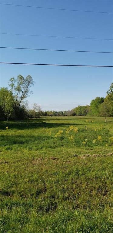 12000 Wilson Road, New Buffalo Twp, MI 49117 (#69021017823) :: Alan Brown Group