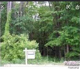 48 West 14 Mile Rd Ravensview Trail, Milford Twp, MI 48381 (#2210042500) :: The Mulvihill Group