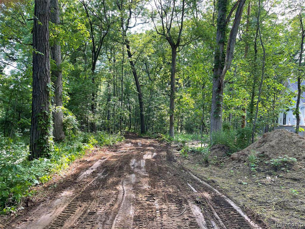 Vac Dixboro Road - Photo 1
