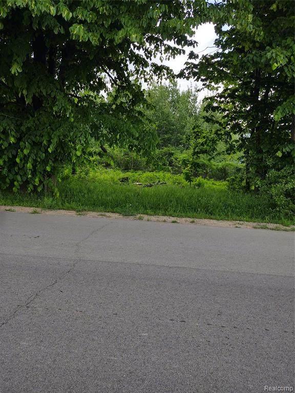 0 Old North Lake Road, Watertown Twp, MI 48464 (#2210043712) :: RE/MAX Nexus