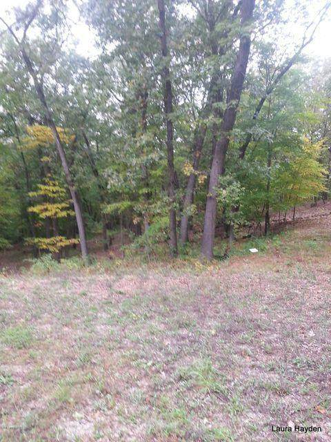 Lot 8 Vising Drive, Boston Twp, MI 49331 (#65021021665) :: Real Estate For A CAUSE