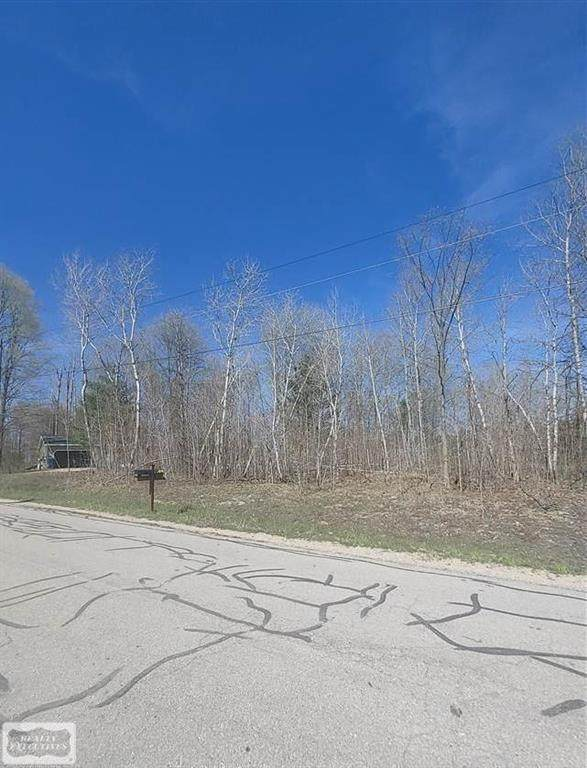 000 Ottawa Trail, Hanover Twp, MI 49620 (#58050045019) :: Real Estate For A CAUSE
