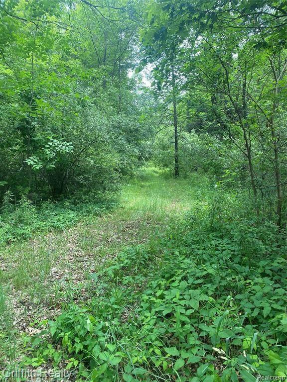 10420 Betterly Road, Cohoctah Twp, MI 48855 (#2210047339) :: GK Real Estate Team