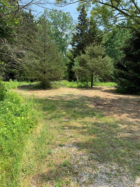 23681 74 1/2 Street, South Haven Twp, MI 49090 (#71021023483) :: Real Estate For A CAUSE