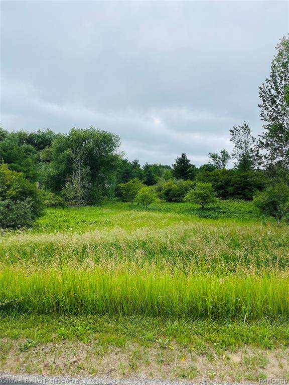 Lot 287 Track Iron Trail, Butman Twp, MI 48624 (#2210048217) :: Real Estate For A CAUSE