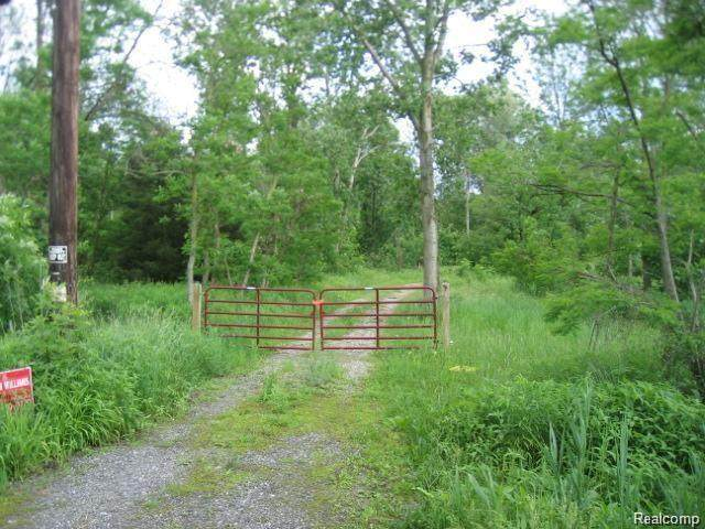 7699 Arnold Road, Ira Twp, MI 48023 (#2210049373) :: Real Estate For A CAUSE