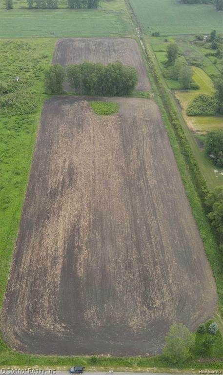 vacant Capac Road, Lynn Twp, MI 48097 (#2210050317) :: Real Estate For A CAUSE