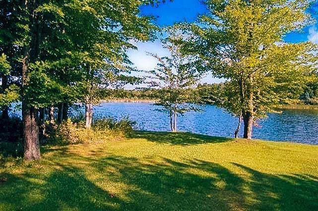 9812 Fawn Lake Drive - Photo 1