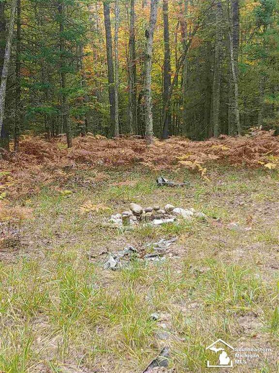 15381 Wild Life Trail, Wolverine, MI 49799 (#57050046577) :: Real Estate For A CAUSE