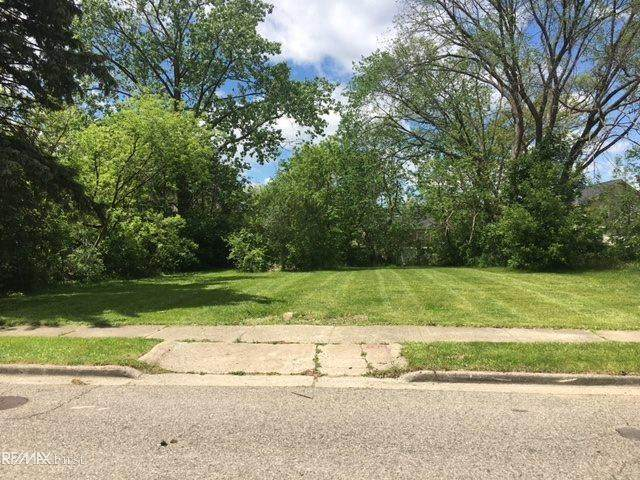 223 Going, Pontiac, MI 48342 (#58050046591) :: Real Estate For A CAUSE
