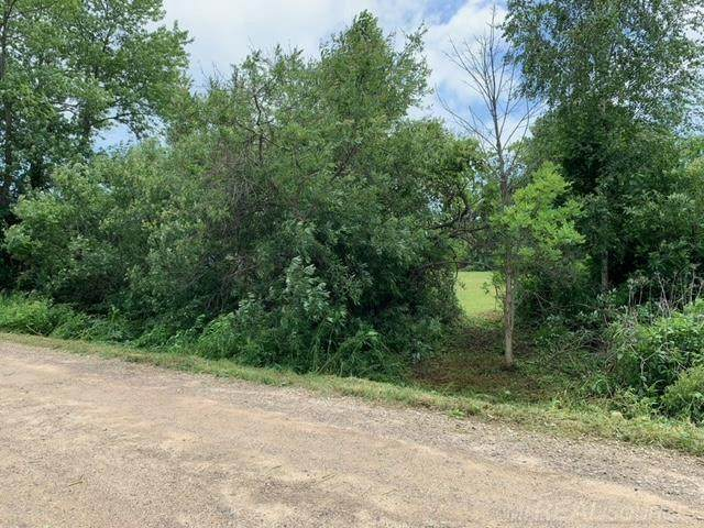 #459 Sunset Blvd, Worth Twp, MI 48450 (#58050046902) :: Real Estate For A CAUSE