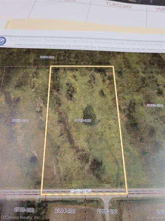 Vacant Carrigan Road, Fort Gratiot Twp, MI 48059 (#2210054886) :: The Vance Group | Keller Williams Domain